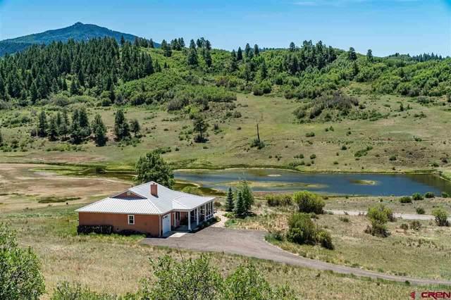 340 Spring Creek Circle, Pagosa Springs, CO 81128 (MLS #771212) :: The Dawn Howe Group   Keller Williams Colorado West Realty