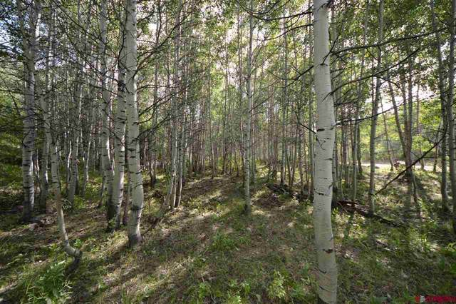 Lot 29 Alta Vista Road, Hotchkiss, CO 81419 (MLS #771368) :: The Dawn Howe Group | Keller Williams Colorado West Realty
