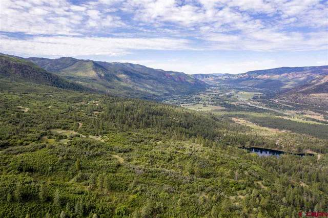 4247 Elkhorn Mountain Road, Durango, CO 81301 (MLS #771396) :: Durango Mountain Realty