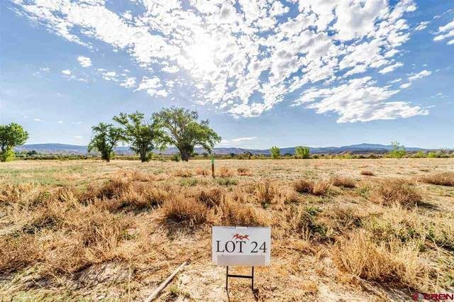 TBD (Lot 24) Scarlet Court, Montrose, CO 81401 (MLS #771938) :: The Dawn Howe Group | Keller Williams Colorado West Realty