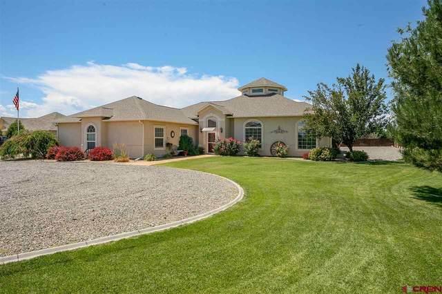 8731 Saddle Ridge Road, Austin, CO 81410 (MLS #772383) :: The Dawn Howe Group | Keller Williams Colorado West Realty