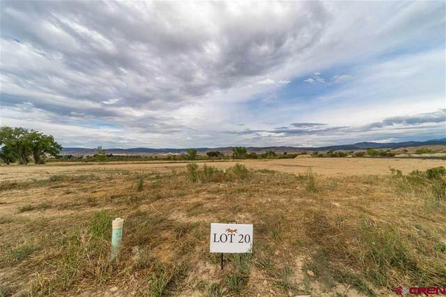 TBD (Lot 20) Scarlet Court, Montrose, CO 81401 (MLS #772544) :: The Dawn Howe Group | Keller Williams Colorado West Realty