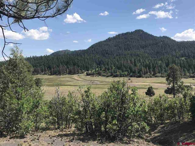 Address Not Published, Pagosa Springs, CO 81147 (MLS #772577) :: The Dawn Howe Group | Keller Williams Colorado West Realty