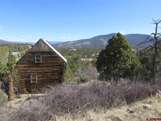 135 Summit Drive, Arboles, CO 81121 (MLS #772583) :: The Dawn Howe Group | Keller Williams Colorado West Realty