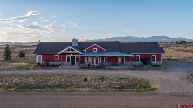 49 Cr 130, Hesperus, CO 81326 (MLS #773325) :: Durango Mountain Realty