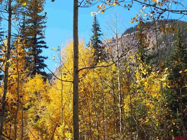 TBD N Hwy 550, Durango, CO 81301 (MLS #773595) :: The Dawn Howe Group | Keller Williams Colorado West Realty