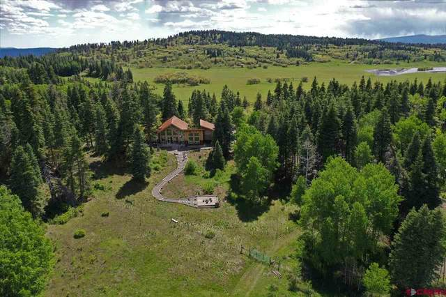 755 Grouse Drive, Pagosa Springs, CO 81147 (MLS #773717) :: The Dawn Howe Group | Keller Williams Colorado West Realty