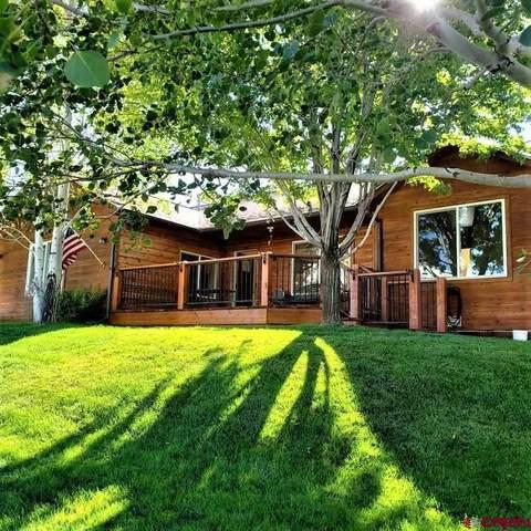 225 S Amelia Street, Ridgway, CO 81432 (MLS #774223) :: The Dawn Howe Group | Keller Williams Colorado West Realty