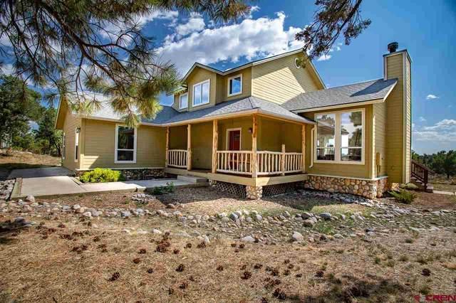 567 Squaw Apple Rd., Durango, CO 81301 (MLS #774860) :: The Dawn Howe Group | Keller Williams Colorado West Realty