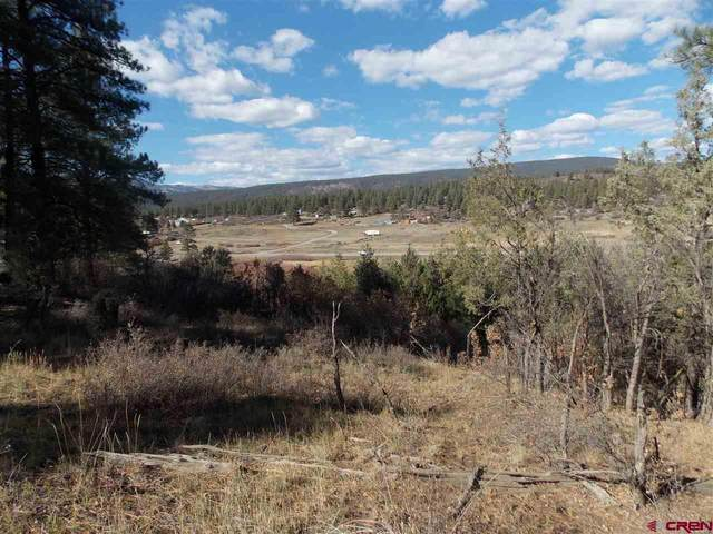 891 E Stollstiemer, Pagosa Springs, CO 81147 (MLS #775029) :: The Dawn Howe Group | Keller Williams Colorado West Realty