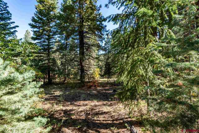 307 Nature's Way, Pagosa Springs, CO 81147 (MLS #775080) :: The Dawn Howe Group | Keller Williams Colorado West Realty