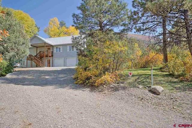 177 Blue Tip Drive, Ridgway, CO 81432 (MLS #775305) :: The Dawn Howe Group | Keller Williams Colorado West Realty