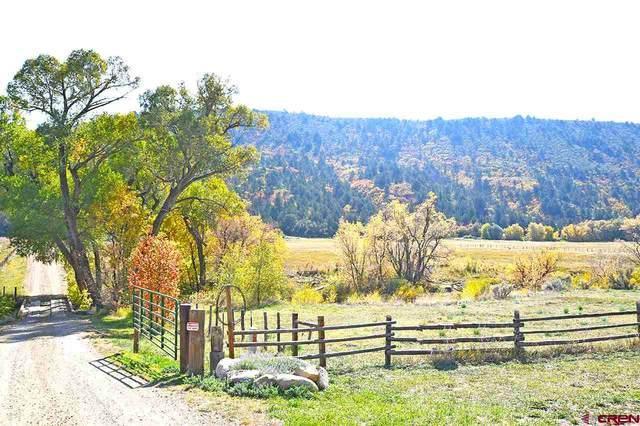 55 Split Rail Trail, Hesperus, CO 81326 (MLS #775335) :: Durango Mountain Realty