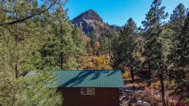 366 Weasel Drive, Pagosa Springs, CO 81147 (MLS #775653) :: The Dawn Howe Group | Keller Williams Colorado West Realty