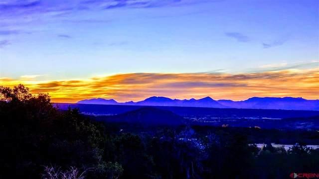 20184 & 20212 High Park Road, Cedaredge, CO 81413 (MLS #775773) :: The Dawn Howe Group | Keller Williams Colorado West Realty
