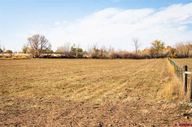 Lot 2 3250 Road, Hotchkiss, CO 81419 (MLS #775859) :: The Dawn Howe Group | Keller Williams Colorado West Realty