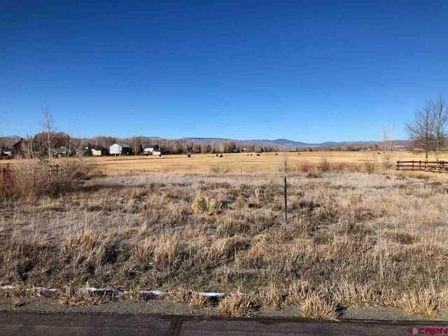344 Tomichi Creek Loop, Gunnison, CO 81230 (MLS #776016) :: The Howe Group | Keller Williams Colorado West Realty