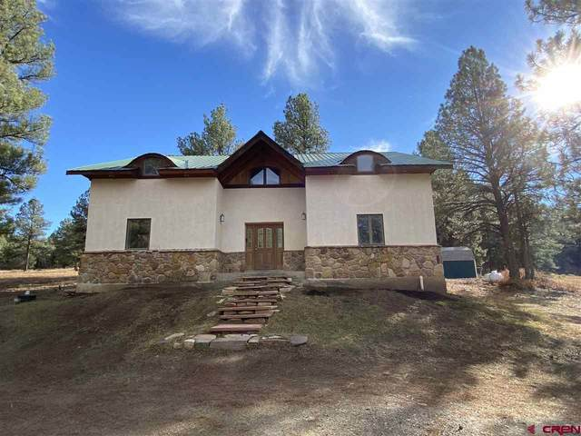 243 Copper Court, Pagosa Springs, CO 81147 (MLS #776104) :: The Dawn Howe Group | Keller Williams Colorado West Realty