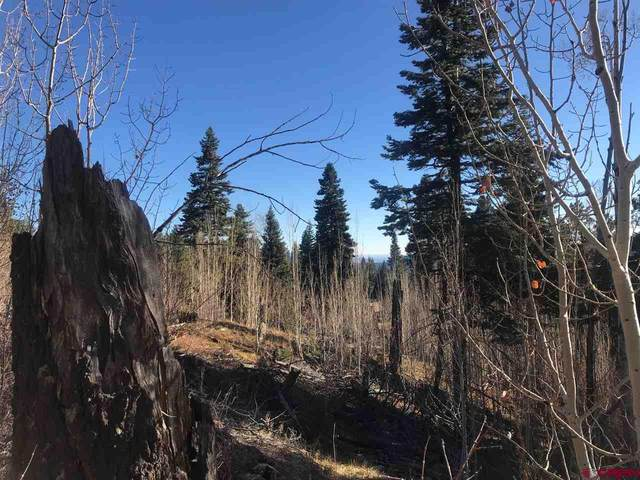 1125 Rosalie Drive, Durango, CO 81301 (MLS #776540) :: The Dawn Howe Group | Keller Williams Colorado West Realty