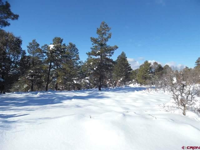127/167/227 Ute/Navajo Lane, Pagosa Springs, CO 81147 (MLS #776787) :: The Dawn Howe Group | Keller Williams Colorado West Realty