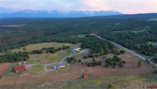 2300 County Road 1A, Montrose, CO 81403 (MLS #777087) :: The Howe Group | Keller Williams Colorado West Realty