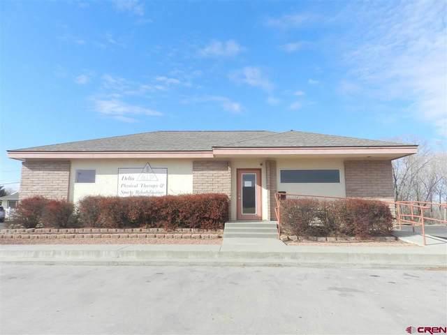 185 Stafford Lane, Delta, CO 81416 (MLS #777295) :: The Dawn Howe Group   Keller Williams Colorado West Realty