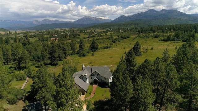 256 Jacobson Circle, Pagosa Springs, CO 81147 (MLS #777690) :: The Dawn Howe Group | Keller Williams Colorado West Realty