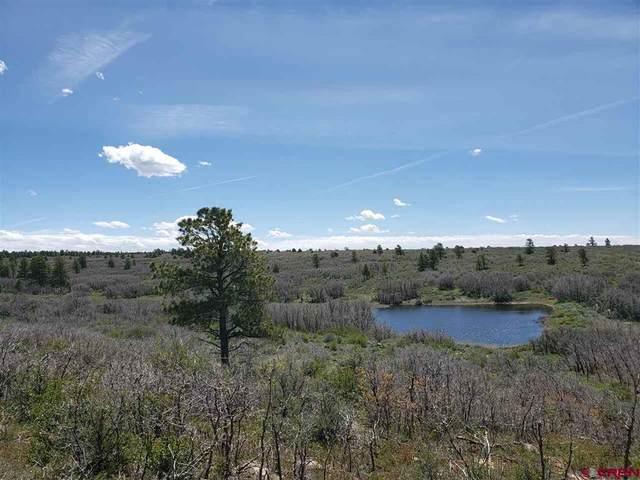 3693 Road 9.4 Secret Canyon Lt 21, Dove Creek, CO 81324 (MLS #778395) :: The Howe Group   Keller Williams Colorado West Realty
