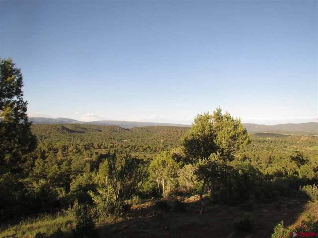 1130 Fox Fire Ridge Road, Bayfield, CO 81122 (MLS #778678) :: The Howe Group | Keller Williams Colorado West Realty