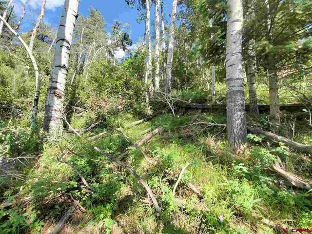 331 N Skyline Drive, South Fork, CO 81154 (MLS #778708) :: The Howe Group   Keller Williams Colorado West Realty