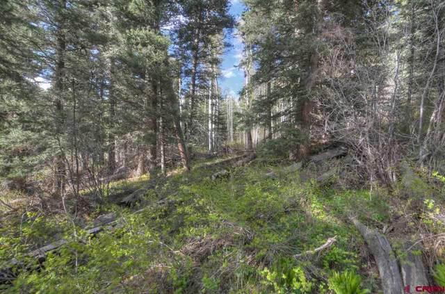 380 Mccoy, Durango, CO 81301 (MLS #778899) :: The Dawn Howe Group   Keller Williams Colorado West Realty
