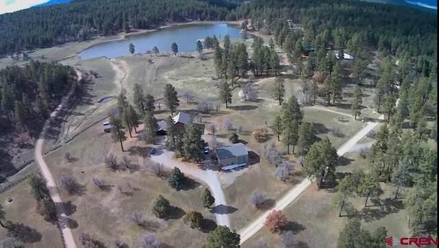 163 Regal Pines Court, Pagosa Springs, CO 81147 (MLS #779109) :: The Dawn Howe Group | Keller Williams Colorado West Realty