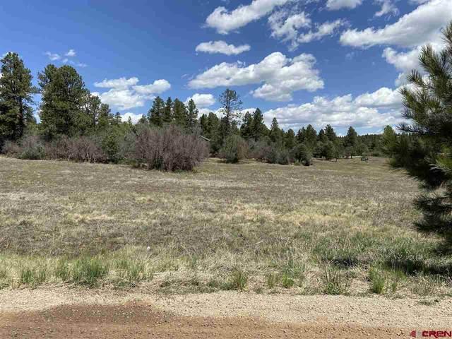 1073 Spring, Durango, CO 81303 (MLS #779291) :: Durango Mountain Realty