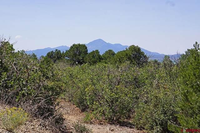 TBD Road U.7, Dolores, CO 81323 (MLS #779382) :: The Howe Group   Keller Williams Colorado West Realty