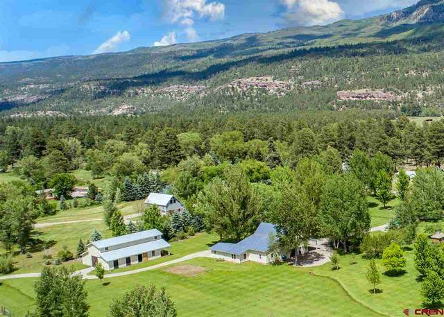 10945 County Road 250, Durango, CO 81301 (MLS #779611) :: Durango Mountain Realty