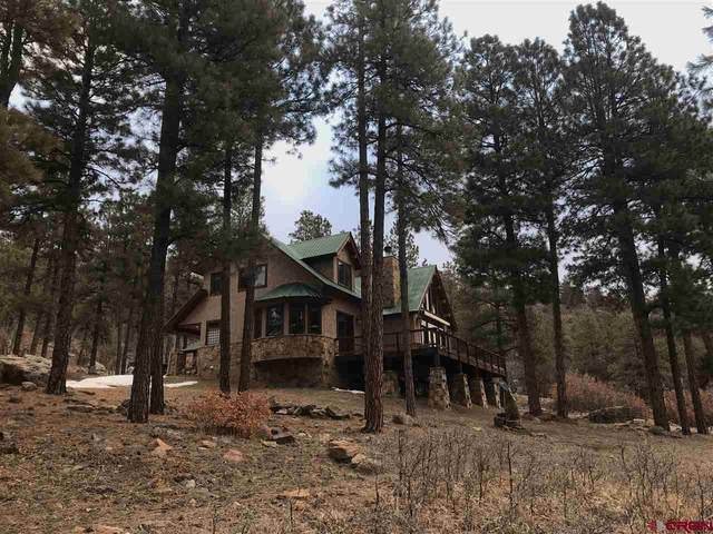 95 Cardinal Court, Pagosa Springs, CO 81147 (MLS #779636) :: The Dawn Howe Group | Keller Williams Colorado West Realty