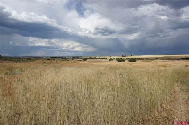 21490 Road 19, Lewis, CO 81327 (MLS #779779) :: The Howe Group | Keller Williams Colorado West Realty