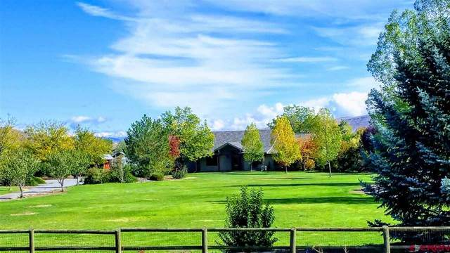 9113 Coogans Bluff Road, Austin, CO 81410 (MLS #780077) :: The Dawn Howe Group | Keller Williams Colorado West Realty