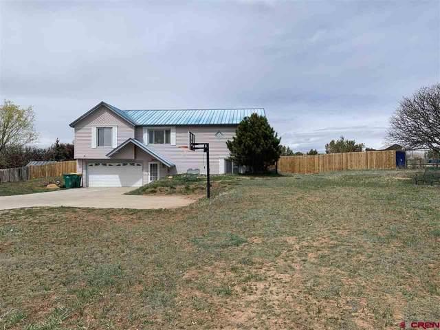 2599 Cr 220, Durango, CO 81303 (MLS #780660) :: Durango Mountain Realty