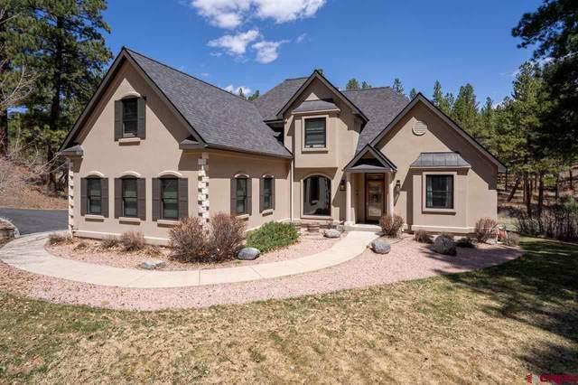257 Iron King, Durango, CO 81301 (MLS #780701) :: Durango Mountain Realty