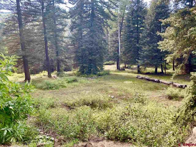 331 Wilderness Drive, Durango, CO 81301 (MLS #780763) :: The Howe Group | Keller Williams Colorado West Realty