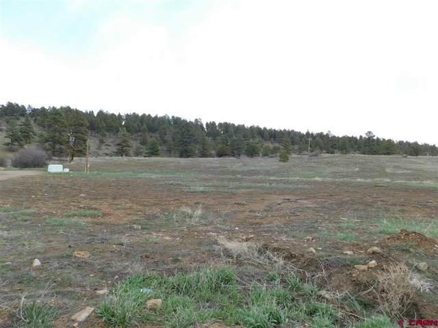 51 Travelers Circle, Pagosa Springs, CO 81147 (MLS #781017) :: The Howe Group   Keller Williams Colorado West Realty
