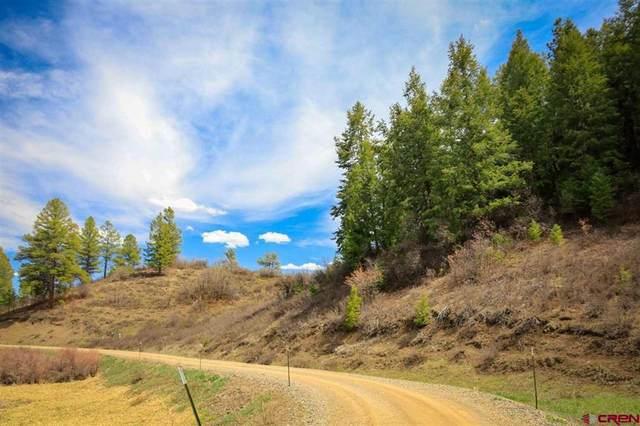 930 Rainbow Drive, Pagosa Springs, CO 81147 (MLS #781649) :: The Howe Group   Keller Williams Colorado West Realty