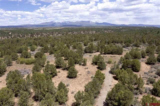 TBD Cr 136, Hesperus, CO 81326 (MLS #782353) :: Durango Mountain Realty