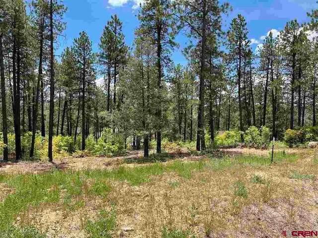 10 Boulder View, Durango, CO 81301 (MLS #782459) :: The Dawn Howe Group | Keller Williams Colorado West Realty
