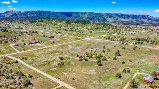 786 Meadows Drive, Pagosa Springs, CO 81147 (MLS #782517) :: The Howe Group   Keller Williams Colorado West Realty
