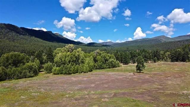 TBD Cr 501, Bayfield, CO 81122 (MLS #782561) :: The Howe Group   Keller Williams Colorado West Realty