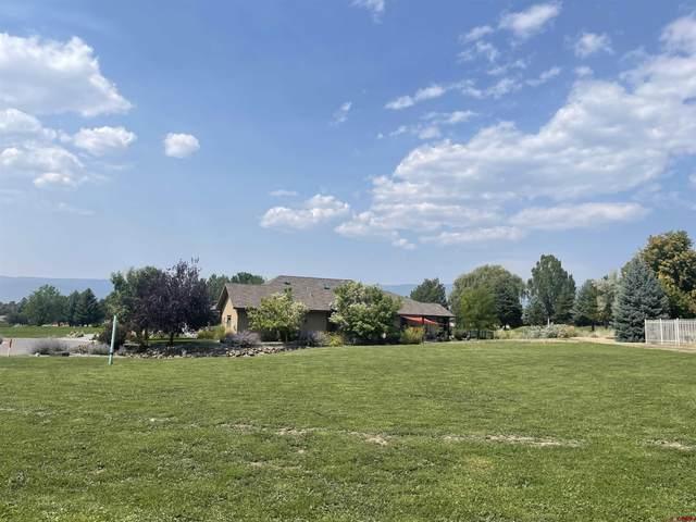 1210 SE Fairway Drive, Cedaredge, CO 81413 (MLS #782755) :: The Howe Group   Keller Williams Colorado West Realty