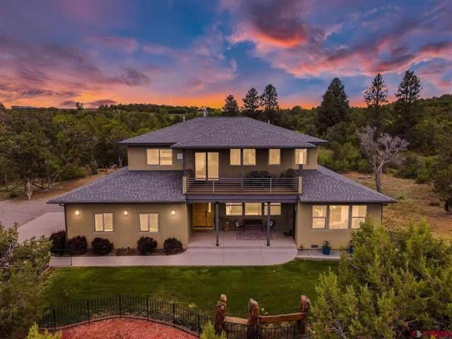 557 Valle Escondido Drive, Durango, CO 81303 (MLS #782788) :: Durango Mountain Realty