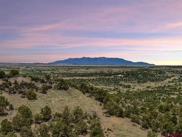 TBD Road V.5 Lot A, Dolores, CO 81323 (MLS #782904) :: Dawn Howe Group | Keller Williams Colorado West Realty